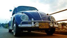 James♥ 66 VW
