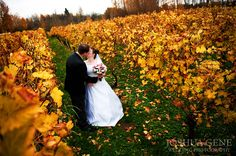 Fall Wedding photo at the McMenamins Edgefield Vinyard