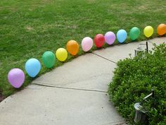 balloons lining the walkway out front