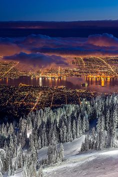 Vancouver city lights from Grouse