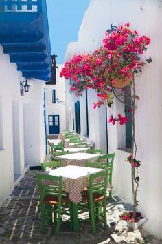 sifnos-island-traditional-greek-tavern-greek-islands-greece-europe-dp43992057l-1600.jpg 399×600 pixels