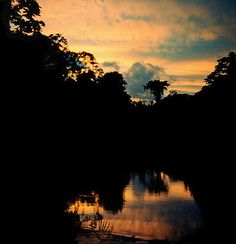 via www.mountainadventures.com End of the day on the Aguas Chile in Madidi National Park, Bolivian Amazon.