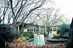 Northlake Wedding & Event Tour 2012-McVay Courtyard