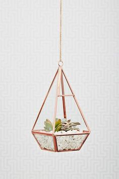 These are so creative - I always love to have some greenery around me in the house so this is perfect! #homedecor #interiordesign #rosegold:
