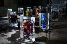 Iced Flowers by Azuma Makoto | Trendland
