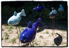 """Walking fishes"" by Joan Sol, via Flickr"