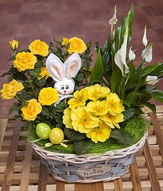 A lovely Easter flower basket featuring yellow Rose plant, miniature Peace Lily and Easter picks.