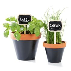 Add a chalk accent to your herb garden with this clay pot project. Mark for paint brushes water, oil, acrylic, etc.