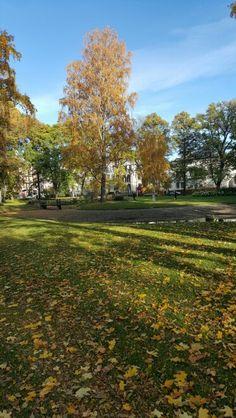 Atumn in Oslo