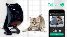 Angry Lychee LLC is raising funds for Felik - Intelligent Pet Companion on Kickstarter! Powered by Artificial Intelligence. Camera tracks pets & Felik reacts to their motions automatically. Clothes Horse, Cat Toys, Your Pet, Book Art, Dog Cat, Cool Stuff, Pets, Projects, Animals