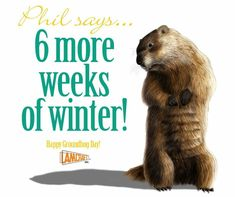 Happy Groundhog Day, St Patricks Day, Holiday Parties, Ground Hog, Funny Quotes, Seasons, Sayings, Minions, February