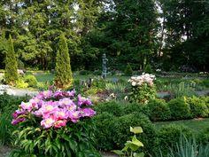 Ogród, Kwiaty, Drzewa, Roślinność