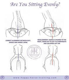 HHT's dressage diagrams give unique visual clarity to many important aspects of riding and training horses.