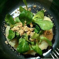 Vegetarian starter with  mushrooms topinambur parmesan crumble and salad  http://ift.tt/1OGsipm  #food #yum #instafood #yummy #amazing #instagood #delish #cibo #ricetteitaliane #starter #italianfoodblogger #italianfood #foodie #blogger #funghi #mushrooms #vegetariano #vegetarian