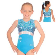 Blue and silver leotard