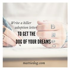 Learn how to write a killer adoption letter that will help you get the dog of your dreams! We've done it 6 times - so we know it works!