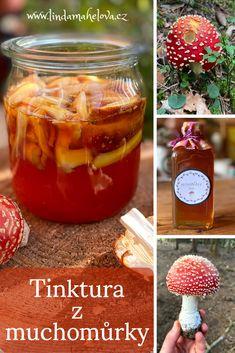 Po celý rok v přírodě nacházíme spoustu bylinek, ale i hub, které jsou léčivé. Ne všechny houby je rozumné užívat vnitřně. Zvláště ty, jejichž obsahové látky mohou vyvolat potíže. Tento článek tedy nenabádá k vnitřnímu užívání této krásné houby, se kterou se v lese setkal snad už každý, ale dá se užívat zevně ve formě obkladu z tinktury. Pudding, Desserts, Food, Tailgate Desserts, Deserts, Custard Pudding, Essen, Puddings, Postres