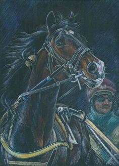 #art #watercolorpencil #coloredpencil #drawing #larisa_andrianova #орловский_рысак #orlov_trotter #Жетон #trotting_race_horse #harness_racing #hippodrome