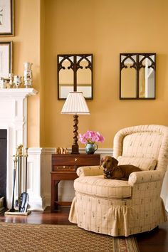 Little Rawley curls up in a living room chair. – Traditional Home ® / Photo: John Bessler / Design: Nancy Serafini