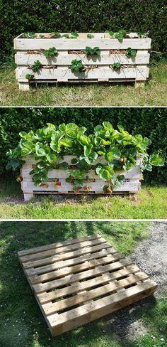 Diy Strawberry Pallet Planter Planter Box Designs Planter Ideas Planter Boxes Diy