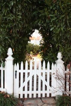 picket fence & stone path