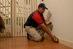 Pest Inspection, Real Estate, Real Estates