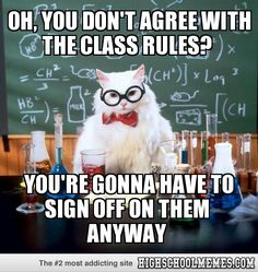 Oh, you don't agree with the class rules? - High School Memes