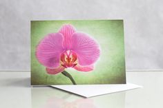 Photographic greeting card. Orchid Photographic by KataniaDesigns