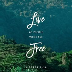 Live as people who are free