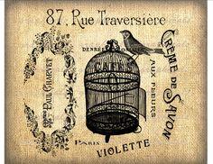 Vintage Paris French ephemera Bird birdcage collage digital download image Iron on fabric transfer burlap decoupage pillow cards No. 752. $1.00, via Etsy.
