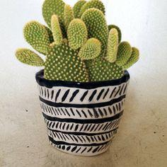 #Ceramics #Cactus
