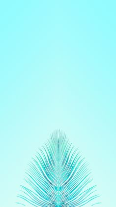 Summer teal wallpaper turquoise wallpaper, mint wallpaper, iphone wallpaper f