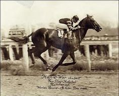 Man o' War. (Big Red). During his racing career, he ran twenty-one races . . . he won twenty of them, losing only one by a nose!