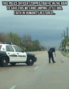thrihving:   webofgoodnews:  Animals getting help from people.  This post warms my heart