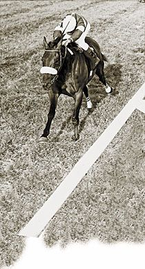 The great John Henry with Jose Amy Up winning the Round Table Handicap on September 16, 1978 at Arlington Park.