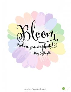 Spring is here. This quote will remind you that you can bloom where ever you are planted.