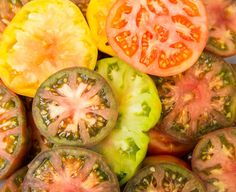 Heirloom tomatoes prepared by Chef Mike Lata on our excursion to Deep Water Cay, Bahamas. #GardenandGun Photo Credit: Paul Marcellini