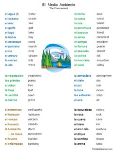 free spanish vocabulary worksheet handout list of words environment medio ambiente printables for teachers