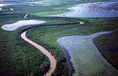 Wood Buffalo National Park, Northwest Territories and Alberta, Canada. Inscription in 1983. Criteria: (vii)(ix)(x)