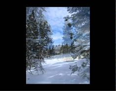 complements today's review at Book Readers Heaven Lonesome Flute in the Winter Mountains