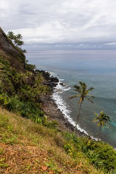 This free Pitcairn Island travel guide will help you discover the top things to see and do on Pitcairn Island and help plan your trip to Pitcairn. Hms Bounty, Pitcairn Islands, Easter Island, Natural Resources, French Polynesia, South Pacific, Tahiti, Islands, Travel