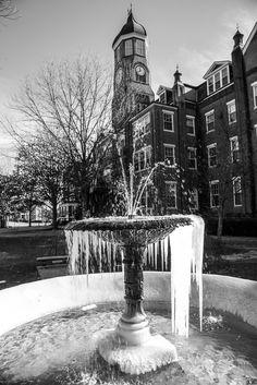 Chris Jenkins Photography Mississippi University, Columbus Mississippi, Mississippi State, State College, Places, Photography, Women, Women's, Fotografie