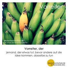 Vorreiter - deutschwortschatz.de / der Schatz der deutschen Wörter