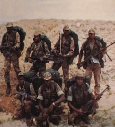 Defence Force, Special Forces, Cold War, Troops, Lions, Cry, African, Lion, Swat