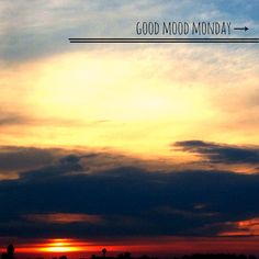 Good Mood Monday | the shellhammer