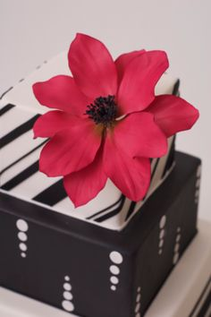 Free Sugar Anemone Flowertutorial on cakecentral from the talented Ron Ben Isreal.
