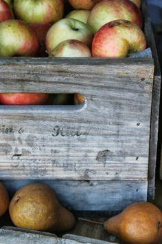 Fresh Picked Apple's ............