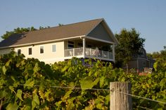Minnesota Wineries, MN Wineries, Minnesota Winery | Garvin Heights Vineyards