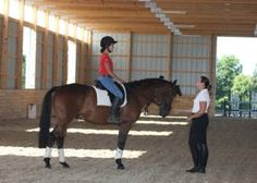 Markel Monday - Do You Give Riding Lessons or Board, Breed or Train Horses? You need a Commercial Equine Liability Policy...