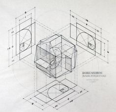 planetaryfolklore:  geometrymatters:The intricate work of...